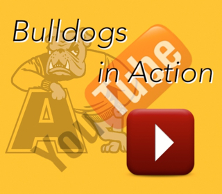 Bulldogs in Action